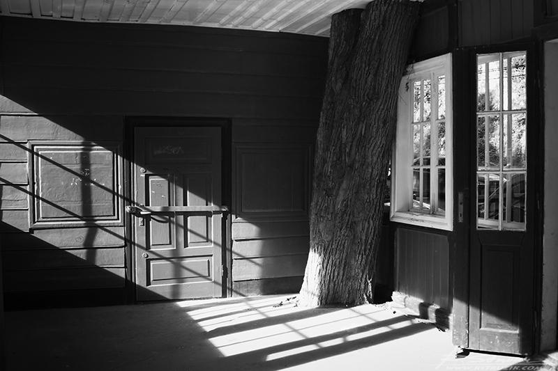 """Ojców, budynek (niegdyś zapewne) PTTK """"żyjący"""" w symbiozie z naturą."""